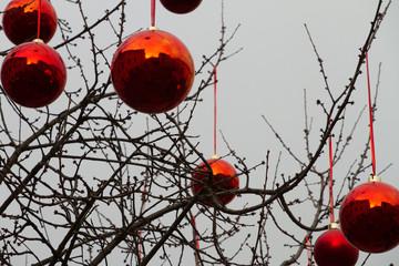Christbaumkugeln an Obstbaum