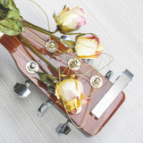 Three wilted roses on acoustic guitar CD cover poster