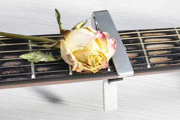 Romantic guitar concept
