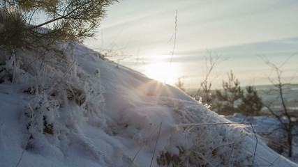 DOLLY MOTION: Beautiful winter landscape. Sunlight is on a hill