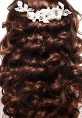 curly hair with a beautiful decoration.. Hairdressing. Wave. Iso