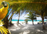 Art Vacation on Caribbean Beach Paradise - 76023099