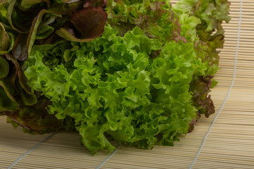 Various Salad leaves mix