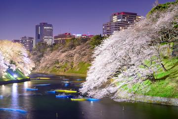 Tokyo Japan Spring Night on Chidorigafuchi Moat