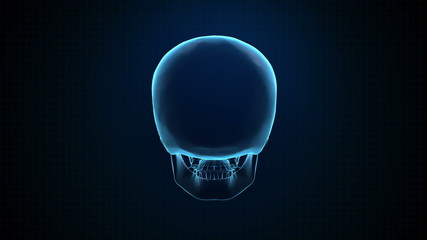 Hitech 3D Animation of Human skull blue Loopable. Alpha matte