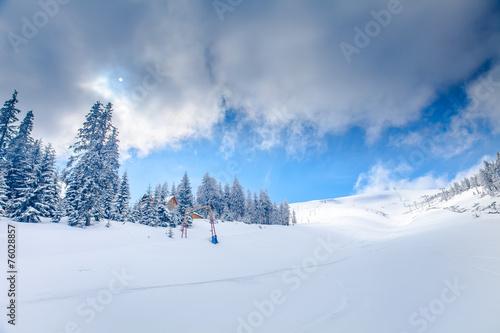 WInter Landscape - 76028857