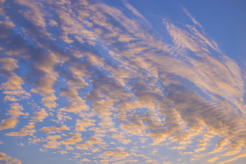 Close up fluffy clouds during sunset after rain