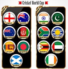 Cricket 2015 match schedule, cricket world cup team  vector
