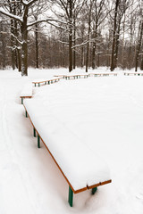 snow on benches in city park