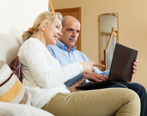 Happy mature couple  with laptop