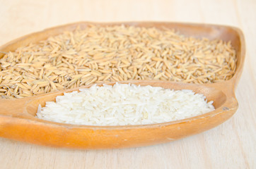 different of paddy and raw rice in wooden bowl.