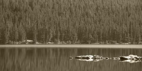 Canadian landscape in Pyraimd lake. Jasper. Alberta