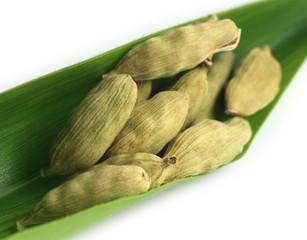 Cardamom seed on green leaf
