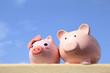 Pink piggy bank couple