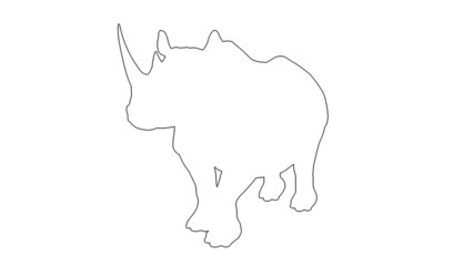 Rhino walks