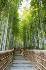 Bamboo forest walkway near adashinonenbutsuji temple, Kyoto © davidevison
