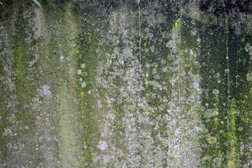 A texture of a concrete wall with a grunge look.