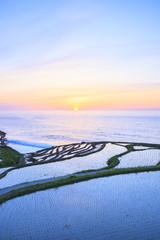 Rice terraces at sunset, Shiroyone senmaida