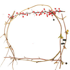 Frame of branches on white background