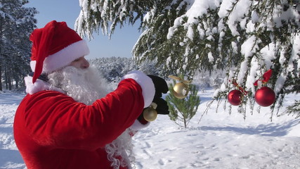 Santa Claus decorating a Christmas tree in a snowy winter forest