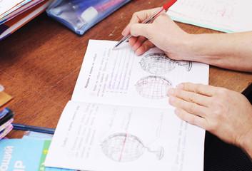 teacher checks school notebooks