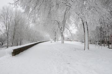 Walkway beside river covered in snow durng winter