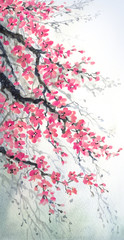 Watercolor painting. Branches of blossoms cherry © Marina
