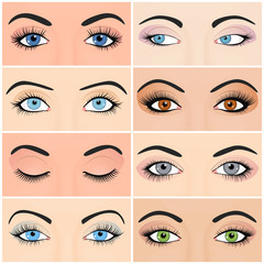 Set of female eyes and brows image with beautifully fashion
