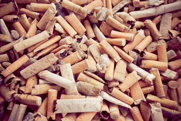 closeup shot of burnt cigarette butts