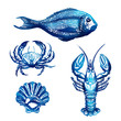 Vector Set of Sketch Sea Food - 76066489