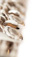Fragment valves flute closeup