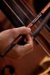 Leinwanddruck Bild - Hand musician playing contrabass