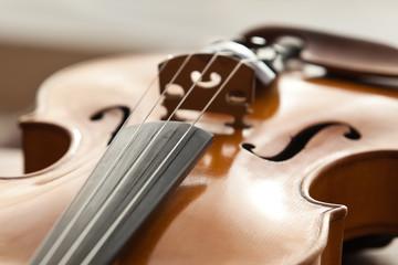 A fragment of a violin