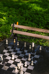 Chess chessboard in Washington Square Park NYC