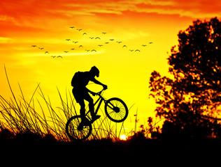 ciclista por el campo entre las plantas