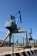 porto di ancona - 76071059