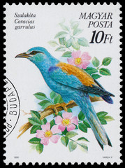 Stamp printed in Hungary shows the European roller