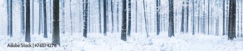 Plexiglas Bossen Winterwald Panorama