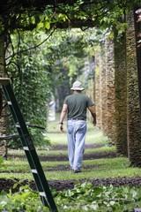 Gardener - Fairchild Gardens