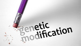 Eraser deleting the concept genetic modification poster