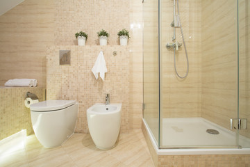 Bidet, toilet and shower