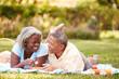 canvas print picture - Senior Couple Having Picnic In Garden