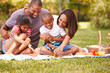 Family Having Picnic In Garden Together