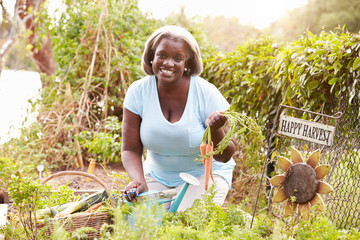 Senior Woman Working On Allotment