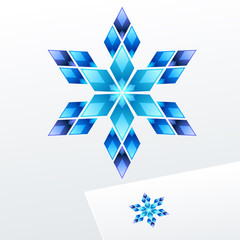 Vector logo with snowflake