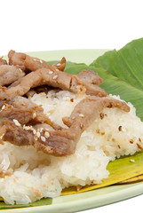 Sticky Rice and Pork fried vertical