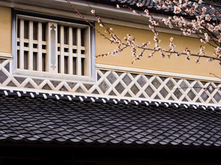 Detail of traditional Japanese house in spring