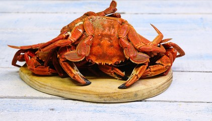 Velvet crab.