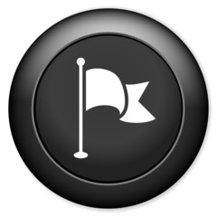 Flag pointer sign icon. Location marker button.