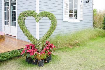 dwarf plants in heart shape